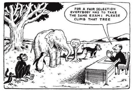 "Comic of bird, monkey, penguin, elephant, fish, seal and dog. Word bubble reads, ""for a fair selection everybody has to take the same exam: please climb that tree"""
