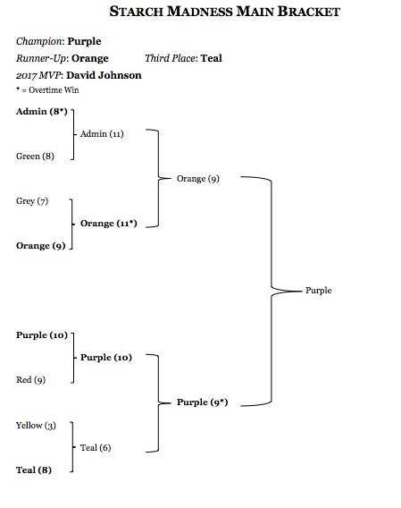 A tournament bracket that shows Team Purple winning the championship